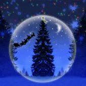 Cursul de iniţiere QITAKY-QIGONG de Crăciun