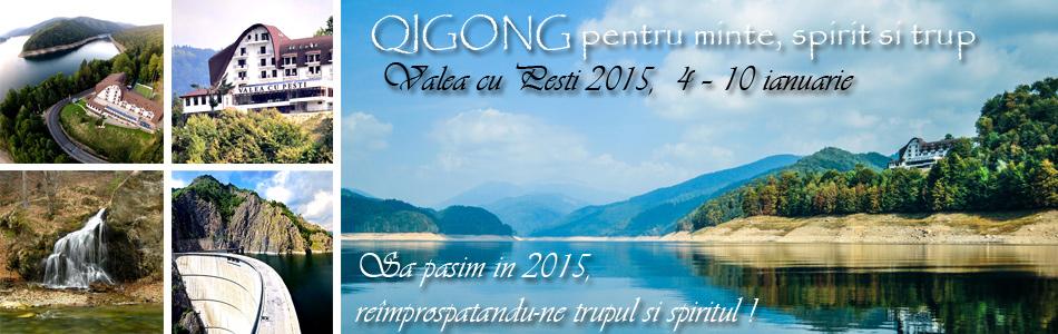Banner Valea cu Pesti 2015