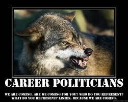 career politicians