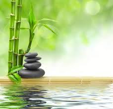 fengshui bambusi