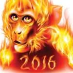 2016 – ANUL MAIMUȚEI DE FOC și PERSPECTIVELE SALE